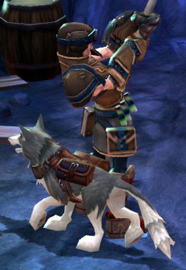 Die nützlichen Haustiere wie hier in Torchlight 1 sind auch in Teil 2 mit von der Partie.