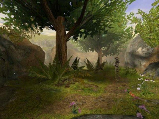 So stellt man sich einen Fabelwald vor!