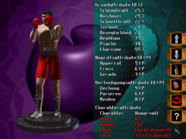 Die Wertungen des Boxers