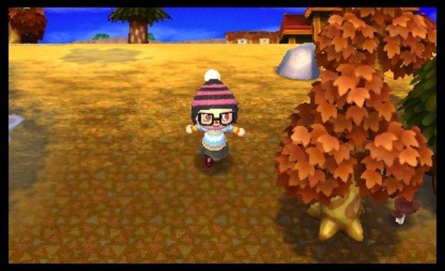 Auch im Herbst ist das Dorf wunderschön.