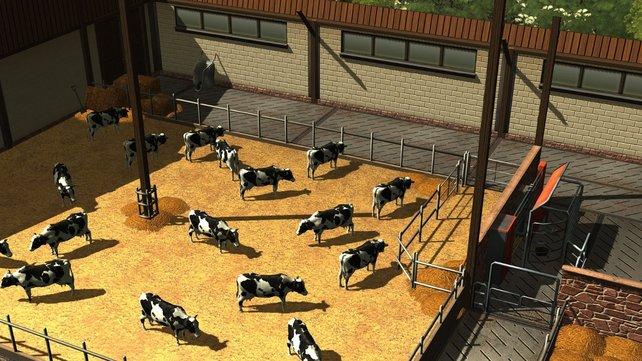 In Der Planer - Landwirtschaft betreibt ihr auch Viehzucht.