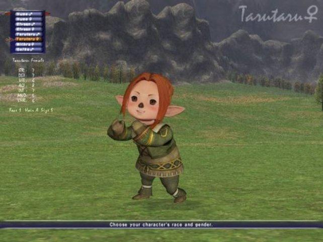 Ein weiblicher Tarutaru