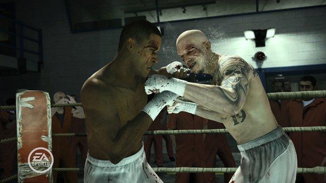 Noch brutaler: Nun kämpft ihr auch ohne Boxhandschuhe.