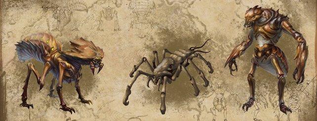 The Elder Scrolls Online: Infos zu den insektenartigen Kwama (Video)