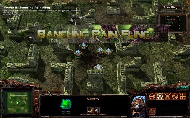 Raynor Party: Spaßiges Turnier aus verschiedenen Minispielen.