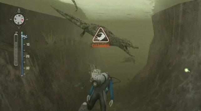Auch in Flüssen lauert die Gefahr: Krokodile!