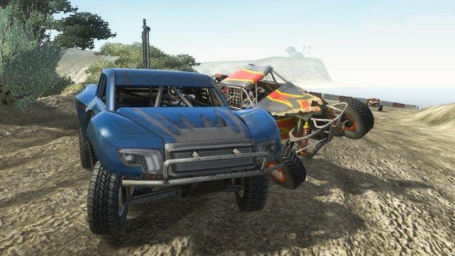 Neben MX und ATV gibt es noch UTV, Sport Trucks und Buggies.