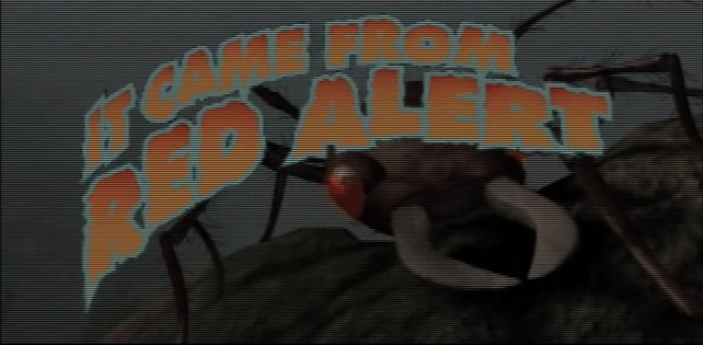 Bei Alarmstufe Rot sind die Ameisen los.