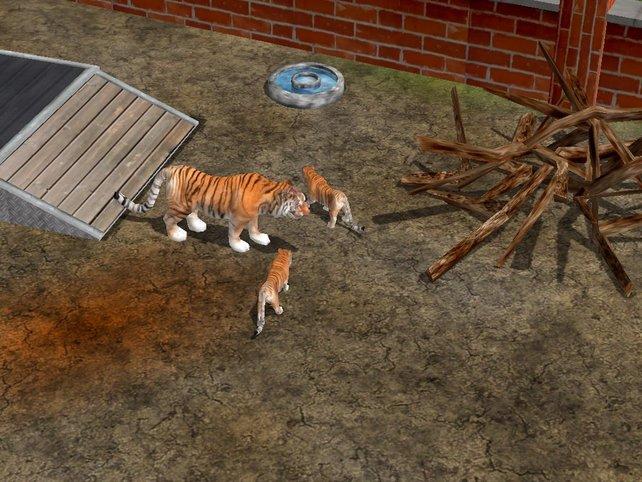 Mit dem Trainingsgerät links am Bildrand, könnt ihr die Tiere fit machen und auswildern
