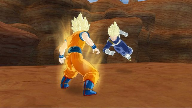 Die Darstellung der Kämpfer ist mit Abstand das beste am Spiel.