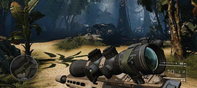 So stellt die Cry Engine 3 im Spiel den Dschungel dar.