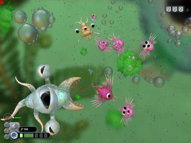 Zu Beginn schwimmen wir als Einzeller durch die Ursuppe