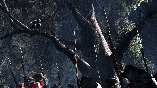 Die Parcours-Elemente verlagert das Spiel in der Wildnis auf die Bäume.