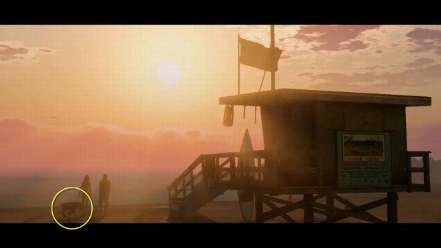 In der ersten Szene des GTA-5-Trailers ist ein Hund zu sehen.