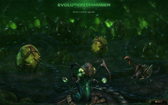 In der Evolutions-Kammer verbessert ihr eure Einheiten.