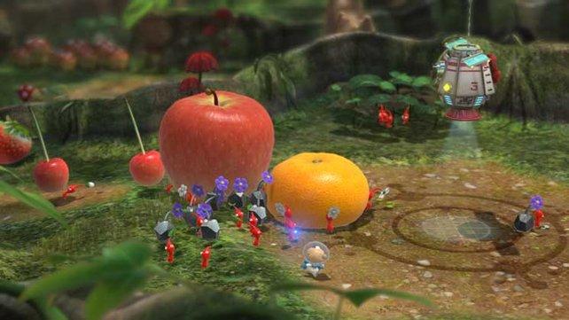 Die Crew der Drake sucht nach Nahrung. Pro Tag benötigt ihr den Saft einer Frucht, um überleben zu können.