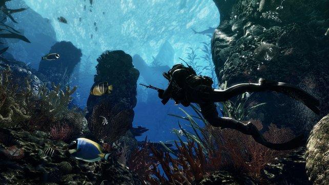 So muss es sein: Auf PS4 läuft das Spiel in 1080p-Auflösung mit 60 Bildern pro Sekunde.