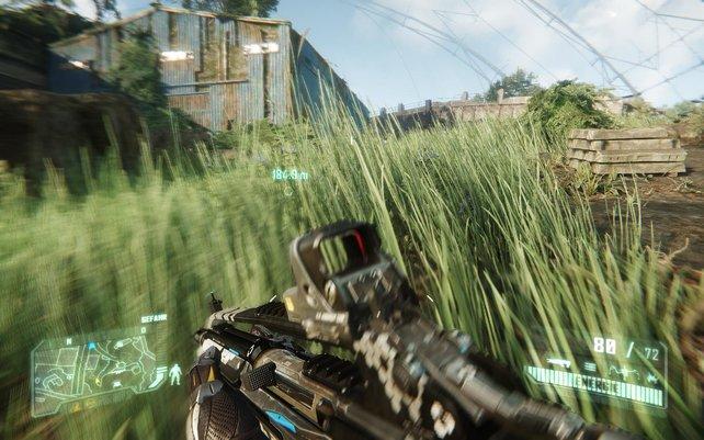 Bei weitläufigen Arealen spielt Crysis 3 seine Technik voll aus.