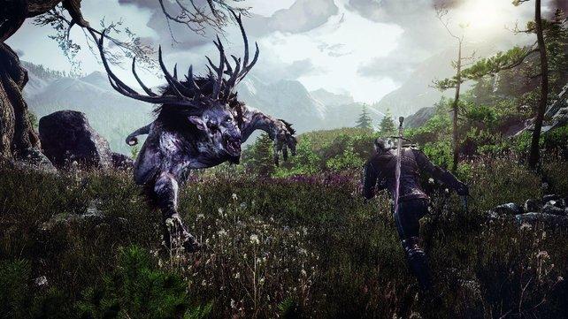 Auf Hauptdarsteller Geralt wartet sein größtes und letztes Abenteuer.