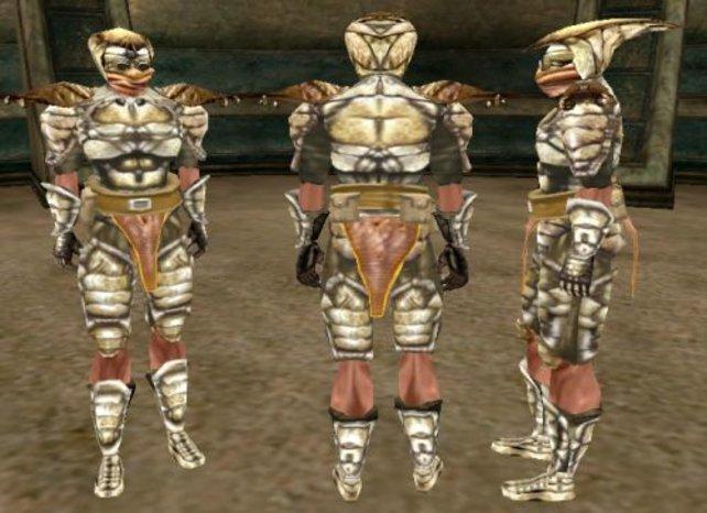 Eine Chitin-Rüstung, wie sie in Morrowind aussieht. Freut ihr euch schon auf die hochaufgelöste Version?