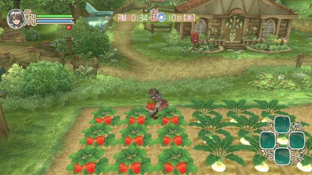 Farmarbeiten stehen immer noch im Mittelpunkt des Spiels.