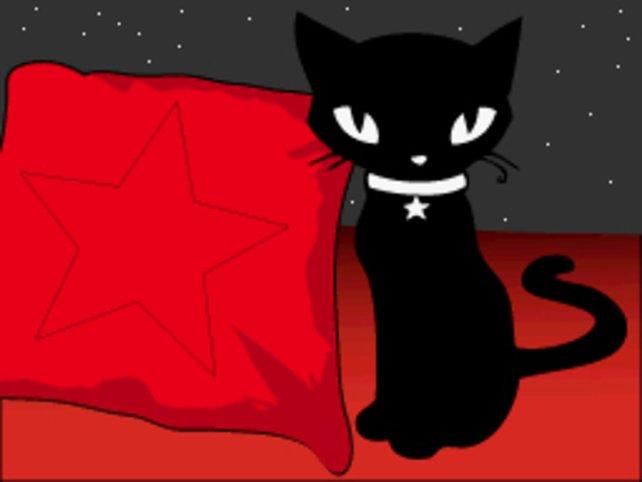 Schwarze Katzen bringen Glück.