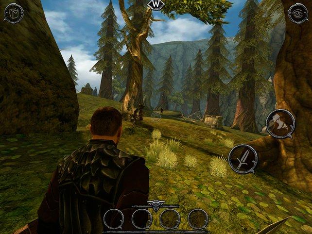 In der übersichtlichen Spielwelt besucht ihr Höhlen, erfüllt Aufträge oder jagt Tiere und Goblins.