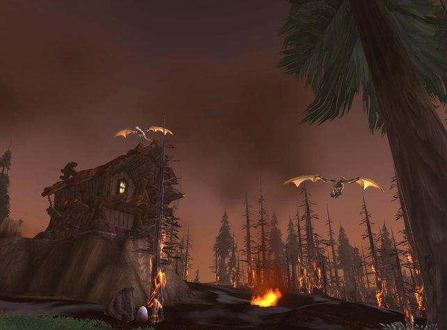 Brennende Bäume im Heulenden Fjord