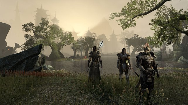In The Elder Scrolls Online erkundet ihr Tamriel