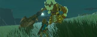 Zelda - Breath of the Wild: Erster DLC auf Wii U viel größer als auf Nintendo Switch