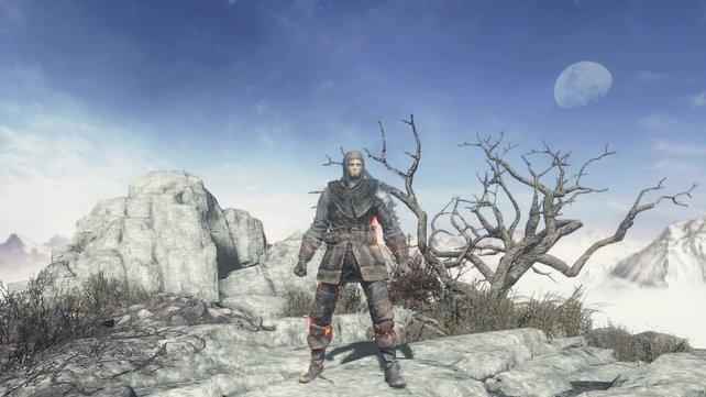 Die Rüstung des Assassinen - Kritische Stellen sind mit Metall geschützt.