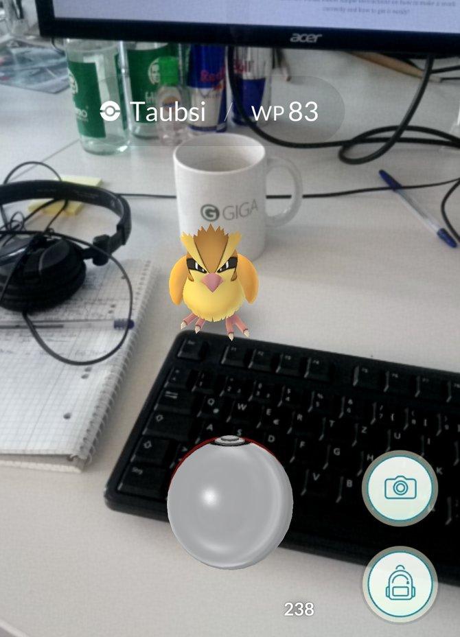 Das erste Pokémon in unsere Liste wurde von einer Kollegin auf ihrem Schreibtisch gesichtet. Selbstverständlich wurde das süße wilde  Taubsi sofort eingefangen.