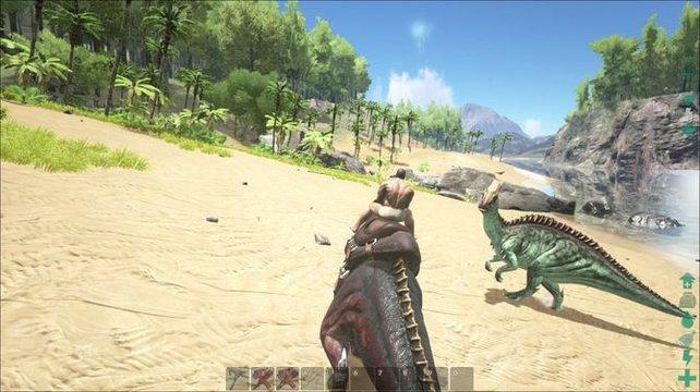 Levelt euer Reittier auf und kämpft gegen andere Dinosaurier.