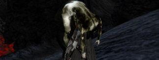 Wahr oder falsch? #187: Gibt es einen schwarzen Todes-Assassinen in Morrowind?