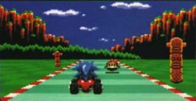Ach, Sonic! Nach Sonic Drift hat jeder Gartenigel mehr Würde als du.