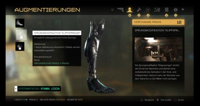 """Bein-Upgrade: """"Sprungmodifikation Klippspringer"""""""