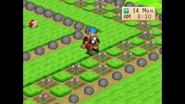 Harvest Moon: Back to Nature ähnelt dem N64-Teil, erlaubt euch aber zusätzlich, über einen Fernsehshop Küchengeräte zu ordern. Daneben helfen euch Wichtel bei der Feldarbeit - nur nicht im Frühjahr, da feiern sie ihr Teefest.