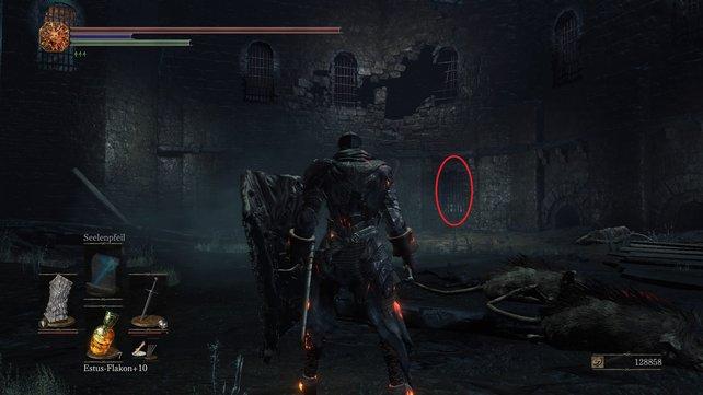 Ihr werdet Siegward in einer Zelle in diesem Bereich finden.
