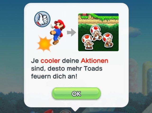 In der Toad-Rallye kämpft ihr auch um die Gunst der Toads - bemüht euch!