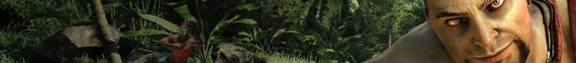 Far Cry 3 (360)