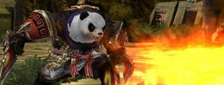 Eligium - Der Auserwählte: Von Pandas, Elfen und Pferdeeiern