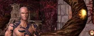 Ice & Blood: Sacred 2 wird noch gr��er
