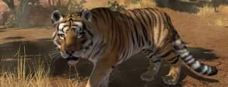 Zoo Tycoon: Auf der Xbox One sind die Tiere los