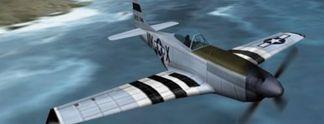 Fighter Squadron: SDOE