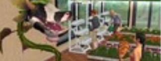 Die Sims 2 - Wilde Campus Jahre