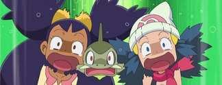 Specials: 10 typische Pokémon-Spielertypen