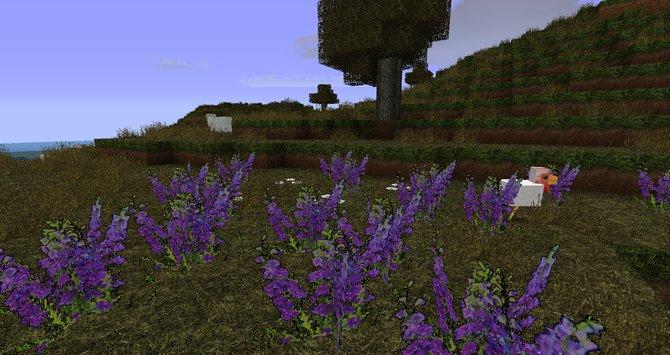 Links: Der Detailgrad der Texturen lässt den Spieler sogar vergessen, dass die Welt von Minecraft aus einfachen Blöcken besteht. Mitte: Die Gräser und die ...