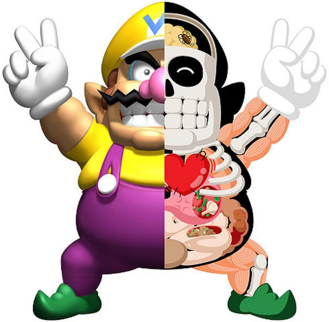 Dr. Mario fragt sich mittlerweile, ob es wirklich richtig war, Wario zu röntgen. Denn diesen Anblick wird er so schnell wohl nicht wieder vergessen.