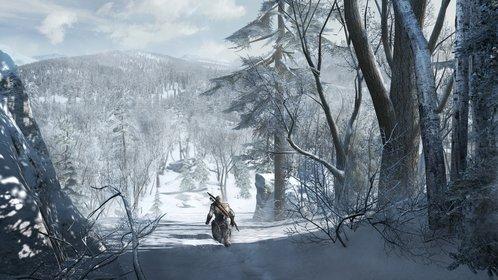 Assassin's Creed 3: Die neue Welt ist groß. Mit dem neuen Assassinen Connor gibt es viel zu entdecken.