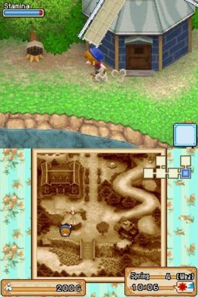 In der Welt von Harvest Moon - Der Großbasar gibt es viel zu entdecken.